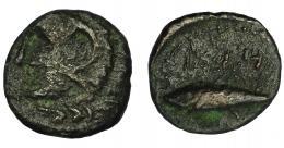 29  -  HISPANIA ANTIGUA. GADIR. Mitad o cuarto. A/ Cabeza de Melkart a izq. R/ Atún a izq., encima m`pl/ (´gdr). AE 1,53 g. 14,9 mm.  I-1346. ACIP-692. Pátina oscura. BC+. Escasa.