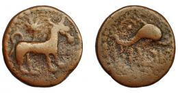 4  -  HISPANIA ANTIGUA. ASIDO. Semis. A/ Toro a der., encima estrella. R/ Delfín a der., encima creciente con punto, debajo ley. libio-fenicia 'sdnbl. AE 6,12 g. 21,19 mm. I-158. ACIP-914. BC+/BC-. Muy rara.