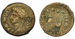 53  -  HISPANIA ANTIGUA. COLONIA PATRICIA. Augusto. Semis. A/ Cabeza a izq.; PERM CAES AVG. R/ Ápex y símpulo; COLONIA PATRICIA. AE 5,63 g. 21,7 mm. I-1992. APRH-130a. ACIP-3358. BC+/MBC-.