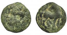 86  -  GRECIA ANTIGUA. ZEUGITANIA. Cartago. Calco (siglo III-II a.C.). A/ Cabeza de Tanit a izq. R/ Caballo a der. con cabeza vuelta. AE 6,28 g. 21,9 mm.  COP-6518. BC+.