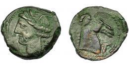 96  -  GRECIA ANTIGUA. ZEUGITANIA. Cartago. Calco (300-264 a.C.). A/ Cabeza de Tanit a izq. R/ Cabeza de caballo a der, delante palmera y debajo punto. AE 5,35 g. 20,7 mm. COP-173/178. MBC/MBC-.
